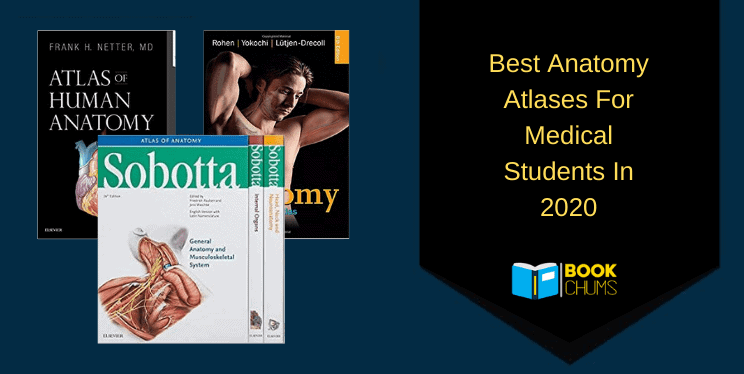 Best Anatomy Atlases For Medical Students In 2020